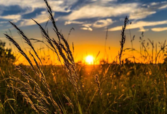 Sun as the source of solar energy